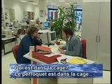 François Embrouille Damiens - Camera Caché: L
